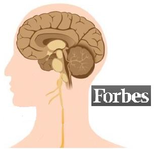 Медицина Израиля: лучшие врачи нейрохирурги по версии журнала Форбс