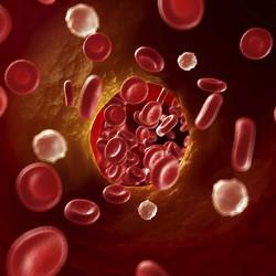 Гранаты и финики против атеросклероза