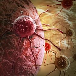 Новые пути в лечении  хронического миелолейкоза